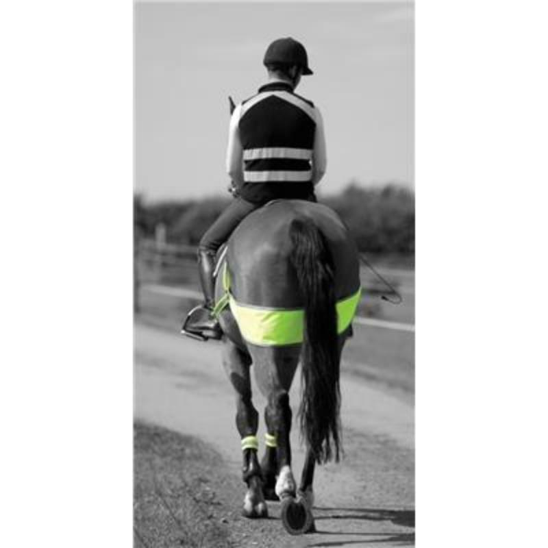 Equine safety Vision Breech Band reflective Horse FREE UK POSTAGE