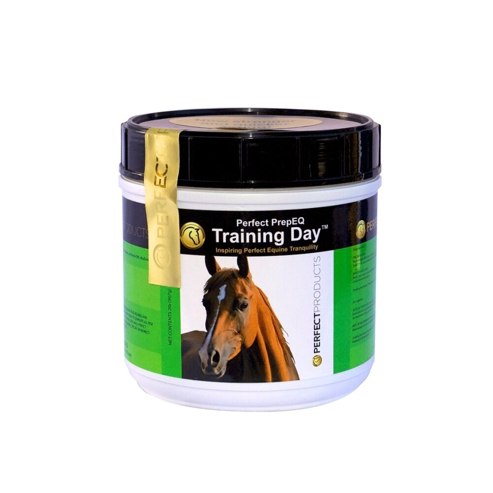 Perect Prep Training  Day Powder - 2lbs -