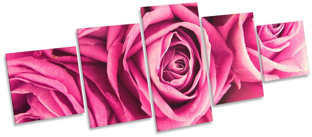 Rosa Rosa Floral Flower Framed CANVAS PRINT PRINT PRINT Five Panel Wall Art 70b9df