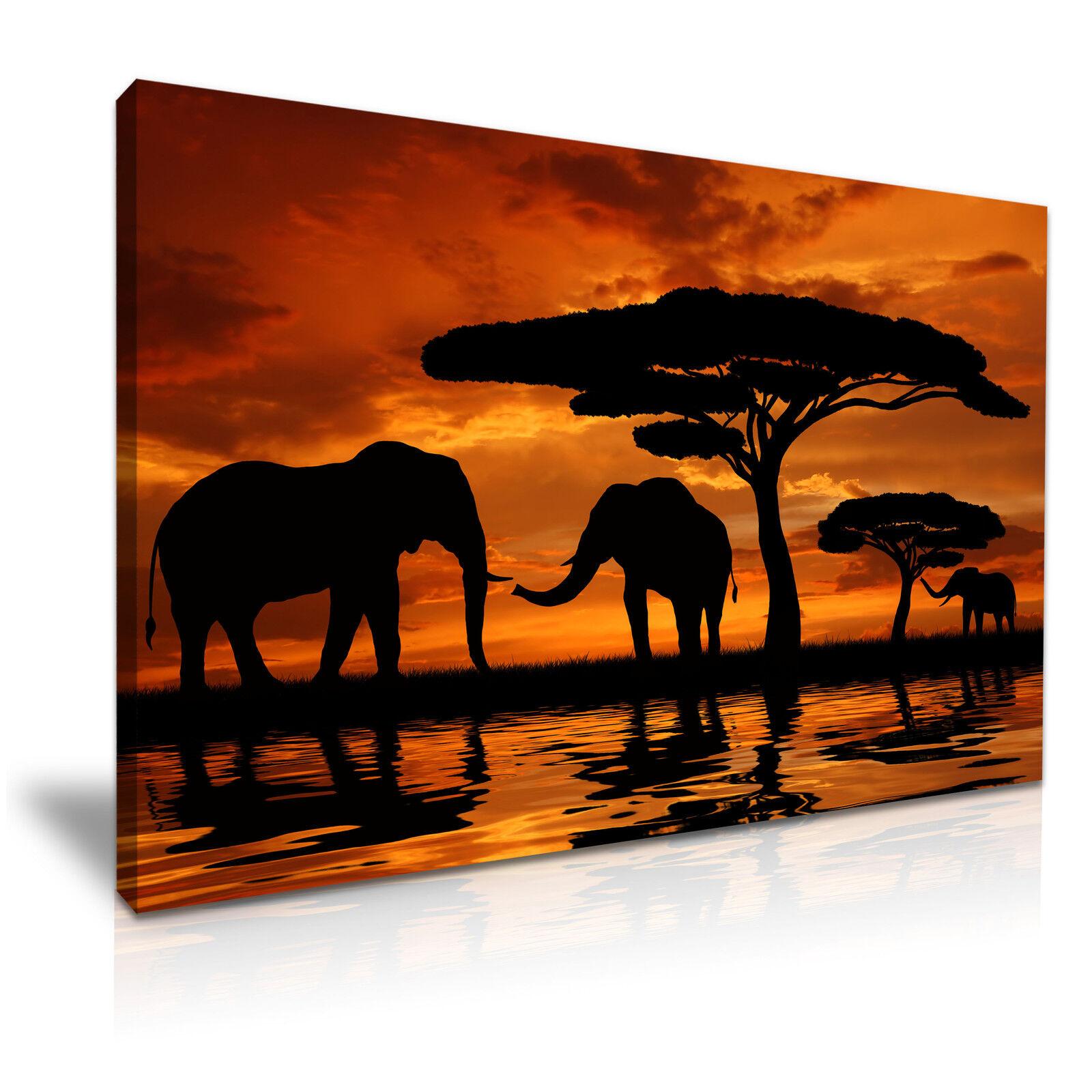 Animales Animales Animales Africanos elefantes Sunset LONA parojo arte Foto impresión 76x50cm c1a475