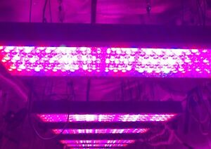 Platinum LED Grow light P900 Series HID Replacement	1000w HPS Full spectrum