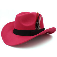 bea7fad9c1373 Pink Feather Flashing Tiara Cowboy Hat for sale online | eBay