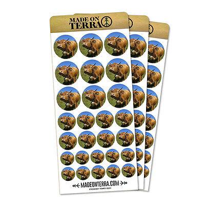 Cow Bell Please Removable Matte Sticker Sheets Set