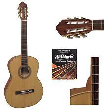 Konzertgitarre - Massiv-Holz Gitarre HG7/8- Jose Ribera- Modell - in Hochglanz