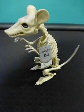 Crazy Bonez Rat Skeleton - Great for Halloween Decor!