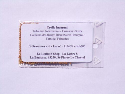 Crimson Clover- Engrais Vert - SEM05 Trèfle Incarnat Trifolium Incarnatum