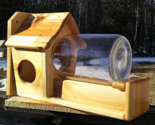 High quality gallon glass jar squirrel feeder, square cedar wood, TBNUP #1