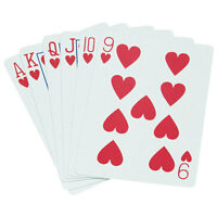 Standard Playing Cards - Pinochle on Sale
