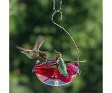 Droll Yankees RUBY SIPPER HANGING HUMMINGBIRD FEEDER, Made in the USA