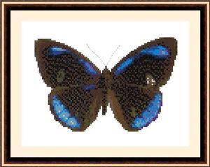 Butterfly-8502-Cross-Stitch-Kit