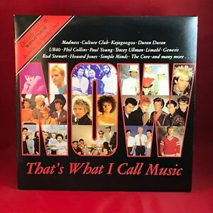 VARIOUS-Now-That-039-s-What-I-Call-Music-1-UK-Double-Vinyl-LP-EXCELLENT-CONDITION-a