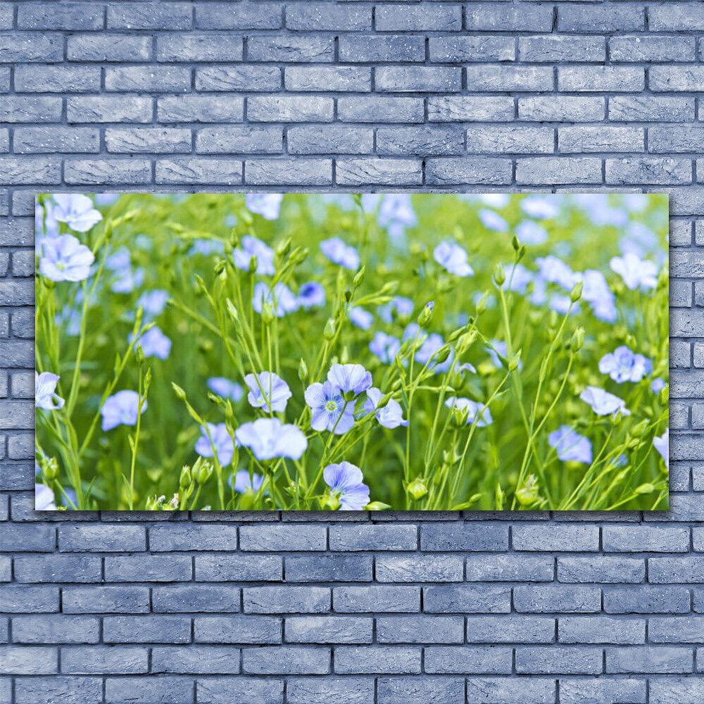 Leinwand-Bilder Wandbild Leinwandbild 140x70 Blaumen Gras Natur