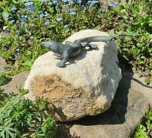 Bronzeeidechse auf Findling Naturstein Gartendeko Teichdeko Eidechse