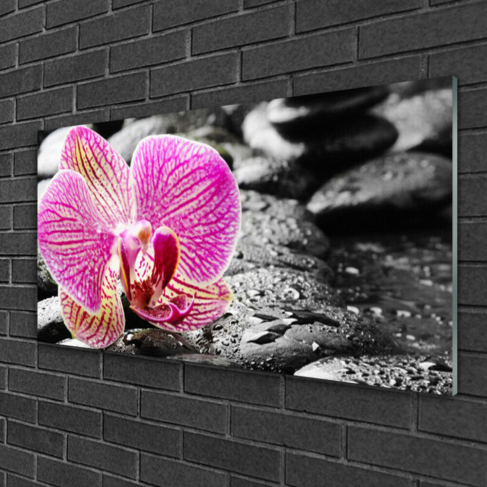 Glass Glass Glass print Wall art 100x50 Image Picture Flower Stones Floral aea209