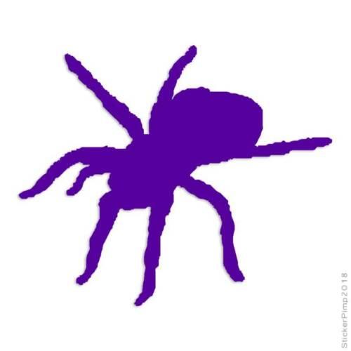 Size #1012 Spider Arachnid Tarantula Decal Sticker Choose Color