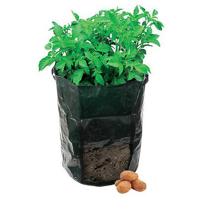 Potato Planting Growing Bag - Tough, Woven Plastic - Suitable For All Varieties