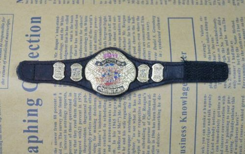 WWE Mattel Elite ECW World Heavyweight Champion Metal Belt for Wrestling Figures