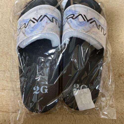 hajime SORAYAMA sandals 2G limited model US9 size