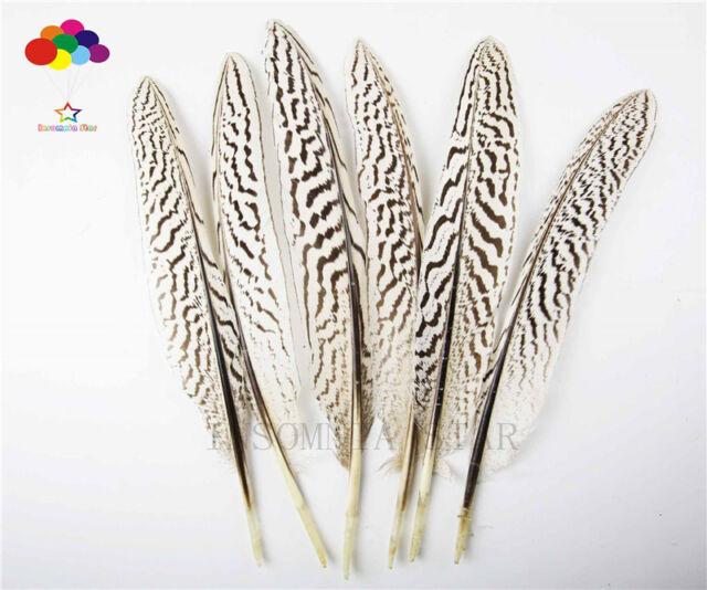 Wholesale Premium 10-100PCS natural Pheasant Tail Feathers 20-25cm/8-10inch