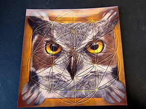 OWL-Totem-Spirit-Animal-Stone-Grid-Layout-Cardstock-8x8in-Hidden-Unknown-Reveal