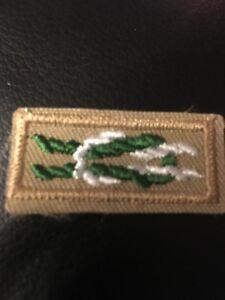 Boy Scout James E West Fellowship Award Square Knot Patch Emblem $1000 Donation