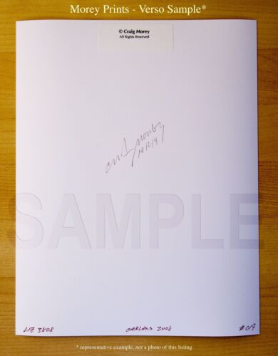 signed 8.5x11 photo by Craig Morey Fine Art Nude portrait Diamond 3000