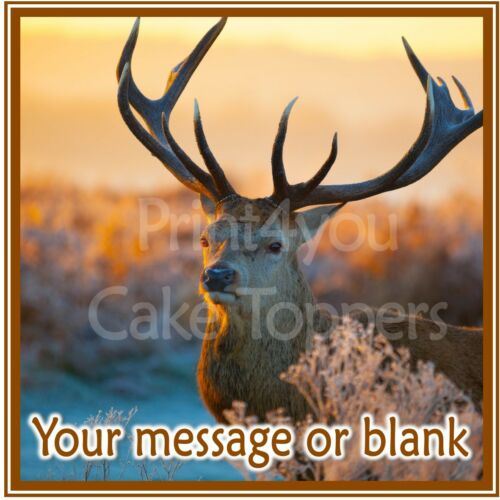 ND3 Deer personalised Square cake topper icing sheet