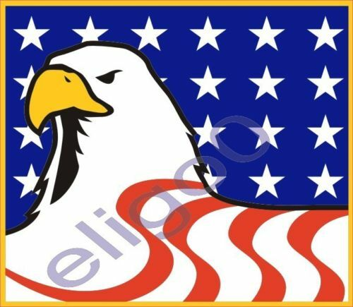 1x STICKER USA EAGLE WITH FLAG american patriot STATES2