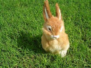 Realistic Lifelike Rabbit Goat//Rabbit Fur R1828GY