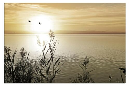 Bild auf LEINWAND LAKE LANDSCHAFT GOLD Living A04522 DEKO fertig gerahmt