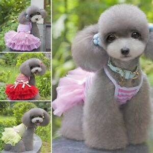 Pet-Dog-Bow-Dress-Summer-Lace-Stripes-Vest-Skirt-Clothes-Wedding-Small-Puppy-Cat