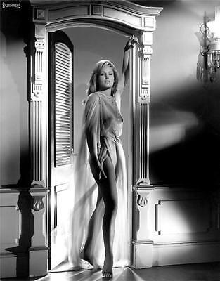 Ursula Andress Hot Glossy Photo No15
