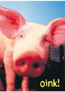 Animalia Affiche~ Ferme Cochon Groin C' Goes 1995 Original 61x86.4cm Taille Lpum8qdx-07213331-353764258