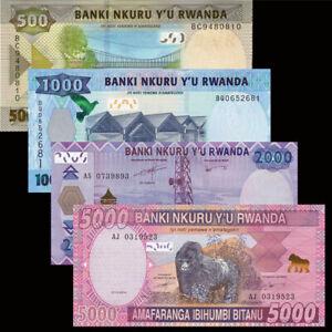 RWANDA-Set-4-PCS-500-1000-2000-5000-Francs-2014-2019-NEW-UNC