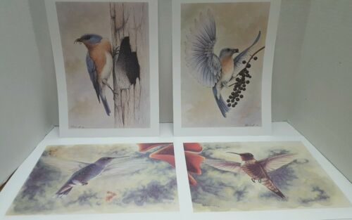 Pagliughi 1991-1992 Set Of 4 BIRDS Art Prints by Artist D