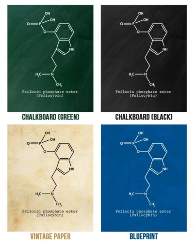Psilocybin Molecule Poster Print Magic Mushrooms Psilocybin Art Stoner Gift
