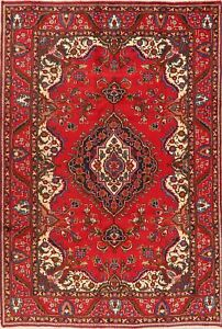 Vintage Floral Traditional Area Rug RED Wool Hand-Knotted Medallion Carpet 6x10