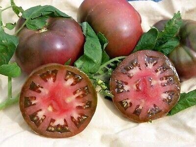 Free ship Buy 4 get 1 Free !! 20 Organic Yellow Brandywine tomato seeds