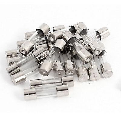 20stk 250V 2.5A 6 x 30mm schnell wirkende schnelle Blasglas-Rohr-Sicherungen