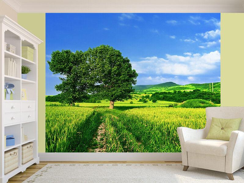 Grün Felder, The Blau Sky und Baum Foto Wandtapete Wandgemälde (3242946) Natur