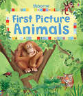 First Picture Animals by Felicity Brooks (Board book, 2007)