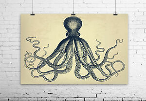 Exceptional Image Is Loading OCTOPUS Wall Art 034 Natural 034 Rustic Vingtage