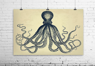 "OCTOPUS wall art ""natural"" - Rustic vingtage background w/ detailed artwork"