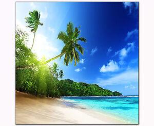 Bild Auf Leinwand Als Kunstdruck 40 X 40 Cm Palmen Strand Karibik