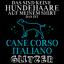 Cane Corso Italiano Glitzer Herren T-Shirt Spruch Geschenk Idee Hunde Besitzer