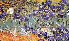 Art Irises Van Gogh Mural Ceramic Bath Backsplash Tile #904
