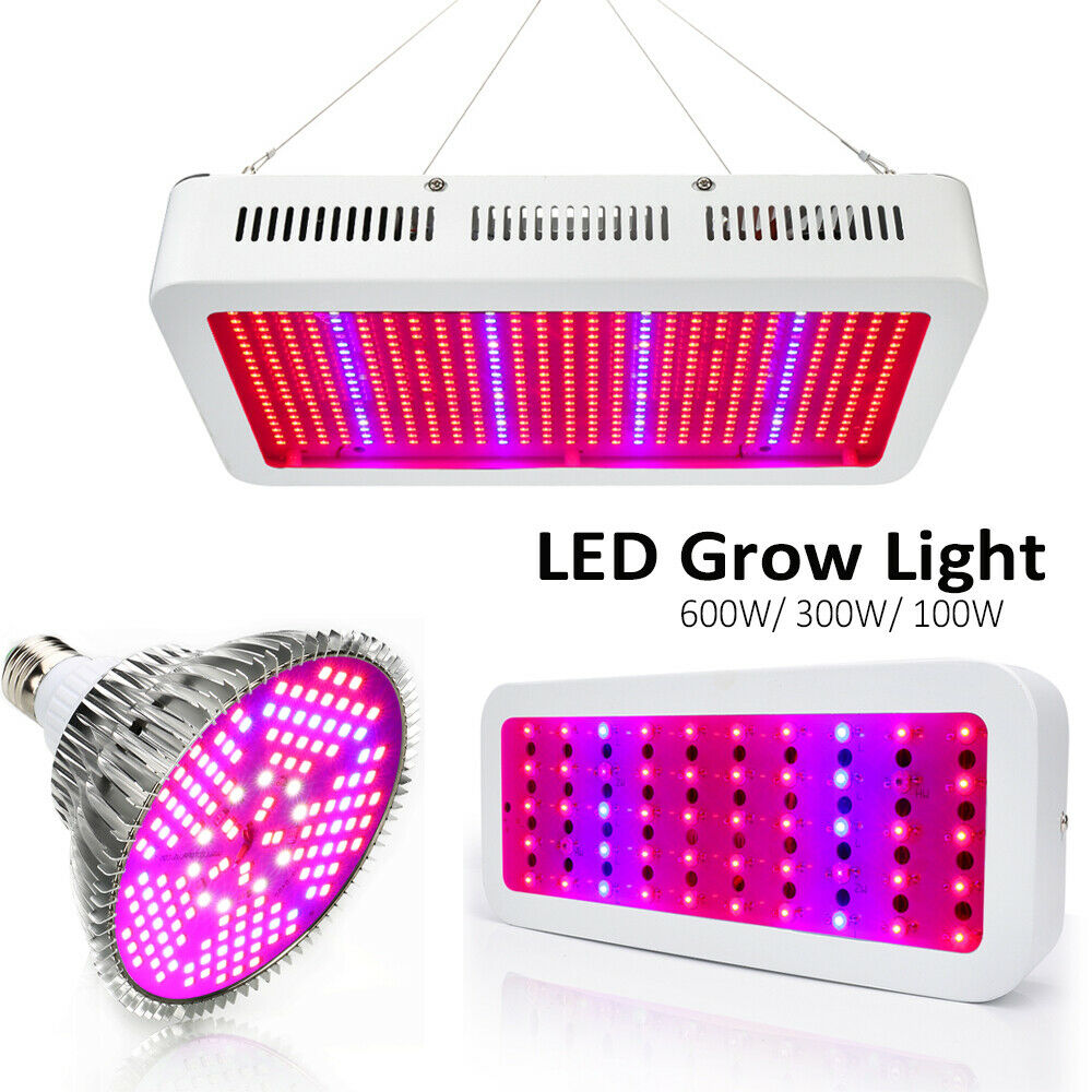 600W 300W LED Grow Light Blaume Veg Pflanzenlampe Vollspektrum LED Pflanzenlicht