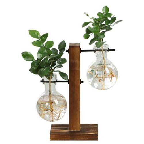 BE/_ Hydroponic Plant Vases Glass Vase Vintage Bonsai Flower Pot Wooden Home Deco