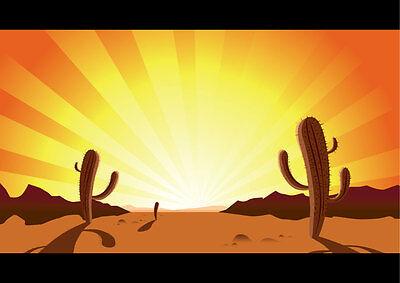 sunnyazauctions