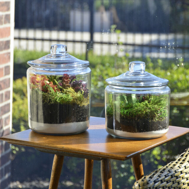 Anchor Hocking Glass Storage Jar 1 Gal.Set of 2 Home Kitchen Container  Organizer